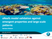 No12 eReefs model validation against emergent properties and large-scale patterns