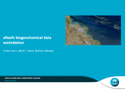 No6 eReefs Biogeochemical data assimilation
